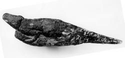 Krokodil aus Stein, XXX. Dynastie, um 380 v. Chr., Ägyptisches Museum Bonn